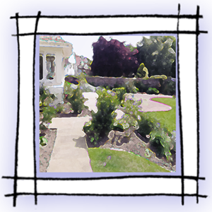 garden in square frame